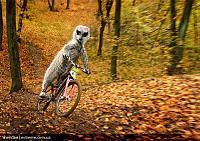 Нажмите на изображение для увеличения Название: maverick_meerkats_10.jpg Просмотров: 99 Размер:291.0 Кб ID:10808