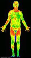 Нажмите на изображение для увеличения Название: Thermal-Infrared-Full-Body-Scan.jpg Просмотров: 832 Размер:185.5 Кб ID:14539