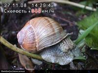 Нажмите на изображение для увеличения Название: 4.jpg Просмотров: 1834 Размер:163.3 Кб ID:1534