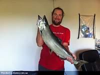 Нажмите на изображение для увеличения Название: salmon1. jpg.jpg Просмотров: 120 Размер:190.8 Кб ID:16374
