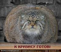 Нажмите на изображение для увеличения Название: K-krizisu-GOTOV-!!!-1.jpg Просмотров: 116 Размер:140.7 Кб ID:1737