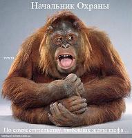 Нажмите на изображение для увеличения Название: нач_охорони.jpg Просмотров: 7185 Размер:262.3 Кб ID:1779