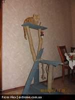 Нажмите на изображение для увеличения Название: трон для Марчи site.JPG Просмотров: 127 Размер:80.2 Кб ID:18528