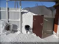 Нажмите на изображение для увеличения Название: повезло со снегом.jpg Просмотров: 215 Размер:169.2 Кб ID:19537