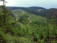 Нажмите на изображение для увеличения Название: West Gorgany_Lake Synevyr-Mizhhiria_2016.07.09-10_12.jpg Просмотров: 111 Размер:638.0 Кб ID:22292