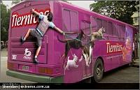 Нажмите на изображение для увеличения Название: bus_art13.jpg Просмотров: 91 Размер:110.7 Кб ID:2419