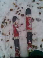 Нажмите на изображение для увеличения Название: Змеи снег и листья.jpg Просмотров: 234 Размер:379.7 Кб ID:5842