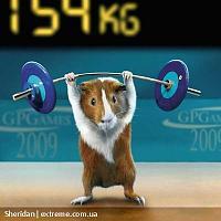 Нажмите на изображение для увеличения Название: zhivhum-olimpiada2.jpg Просмотров: 99 Размер:66.3 Кб ID:7286