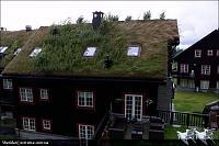 Нажмите на изображение для увеличения Название: 1284404331_norvegian-roof-12.jpg Просмотров: 297 Размер:220.7 Кб ID:9656