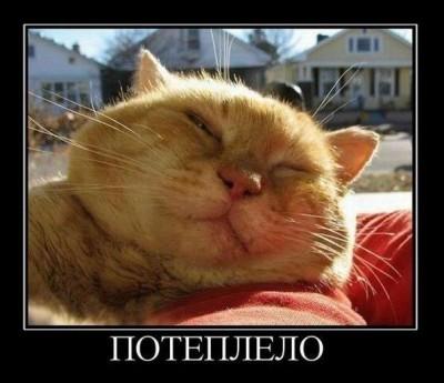 http://extreme.com.ua/forum/thumbs.php?img=https%3A%2F%2Ffbcdn-sphotos-a.akamaihd.net%2Fhphotos-ak-snc7%2F483316_344747895578222_227814320604914_978480_1030882149_n.jpg