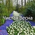 Подобовец : Чистая Весна